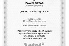 satel 3